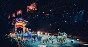 le cirque de la rentrée littéraire
