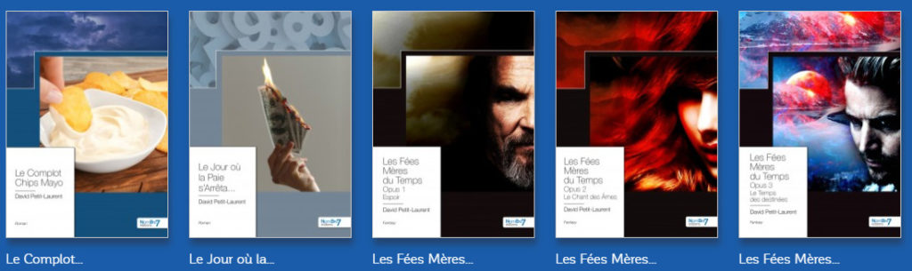 Bibliographie David Petit-Laurent